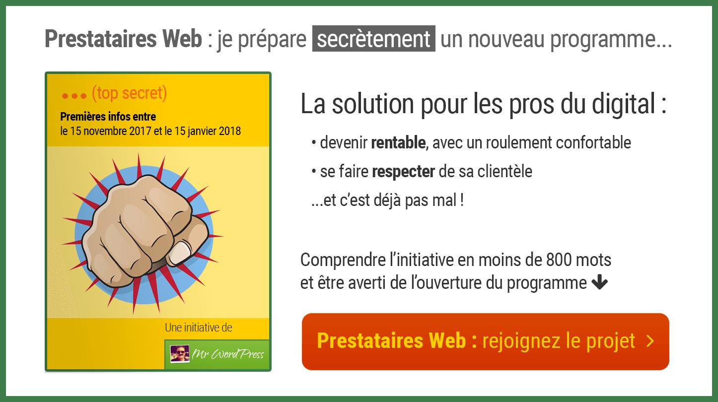 Devenir un prestataire Web respecté et rentable